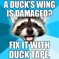 Lame Pun Coon - Duck Tape by INF3CT3D-D3M0N