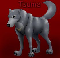 Wolf's Rain: Tsume, colored by WSTopDeck