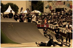 FISE 2009 : III by WindDesert