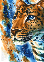 Amur Leopard Watercolour by Simkaye