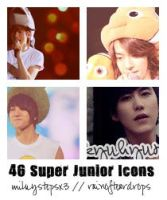 Super Junior Icons Pack by milkystepsx3