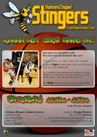 Stingers Youth Bball Leafet by datamouse