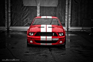 redShelby. by AmericanMuscle