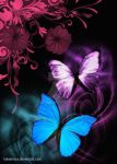 Butterfly and floral design by Haleema-A