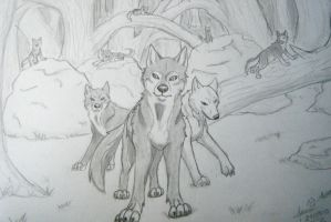 wolf pack by morganwtb11