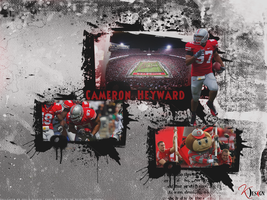Cameron Heyward Wallpaper by KevinsGraphics