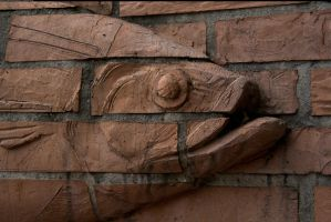 Another fish in the wall by enframed