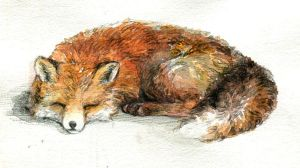 watercolored fox by Viesty2004