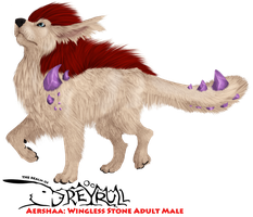 AERSHAA: Wingless Stone Adult Male by StrayCreations