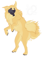 Canine Design: AmarilloWhiskey's Mutt by PaintedCricket