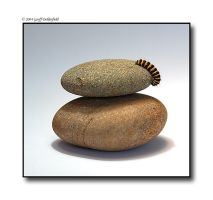 Caterpillar on pebbles by BritishBeef