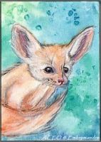COMMISSION - Baby Fennec by Embrymandre