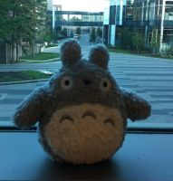 Totoro at University by NearRyuzaki90