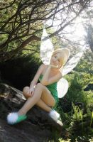 Tinkerbell VI by JokerLolibel