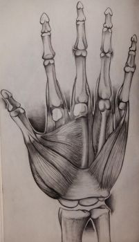 sketchbook: high five by hannarchy