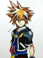 Sora (Kingdom hearts) by Anan-MaQsoud