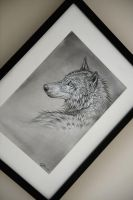 Framed Wolf Drawing by Exileden