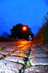 The Street. The Lamp. The Night. by fantom125