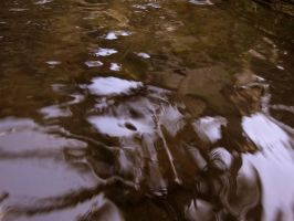 Water Reflections Overlay for-Premade BackGround by annamae22
