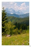 Meadows under Golica_3 by XanaduPhotography