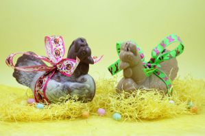 Chocolate Easter Hens by Rea-the-squirrel