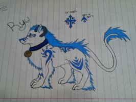 New character: Ryu by Shadowdannie