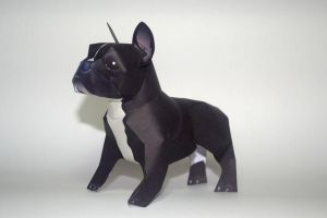 French bulldog papercraft by airasumi