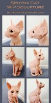 Sphynx Cat Wip by Teggy