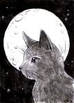 ACEO #110: Inktober Day 12 Cat by MTToto
