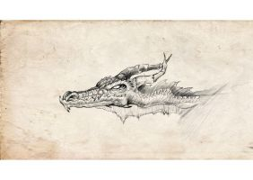 Daily sketch Dragon2 by gailee
