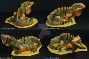 Cuban Rock Iguana Sculpture by CustomExotics