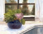 Kitchen Window Violets by Shadow-stepper
