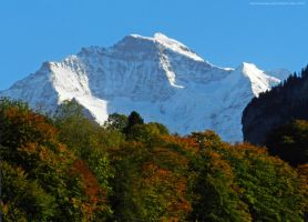 The Jungfrau in Autumn by artamusica