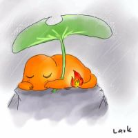 Charmander in the Rain by LarkIsMyName