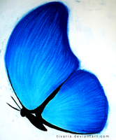 Butterfly by Tivaria