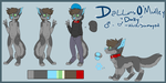 Dally/Fursona Complete Ref 2015 by dallyru