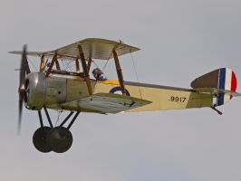 Sopwith Pup - Old Warden by davepphotographer
