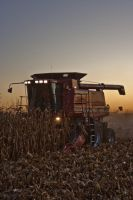 Harvest 2009 by cthacker