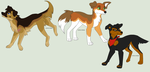 Canine adopts*CLOSED* by commondoge