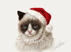 GrumpyCat by amziss