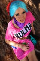 Bulma Brief 5 by CheesyHipster
