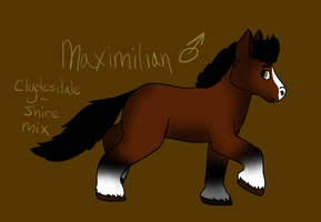 Maximilian Ref by SparksHumbleAbode