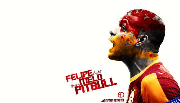 Felipe Melo Wallpaper 2015 by elifodul