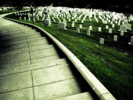 Re:Arlington Cemetery Pathway by ksouth