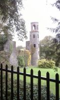 Blarney Castle watch tower by Lioness123