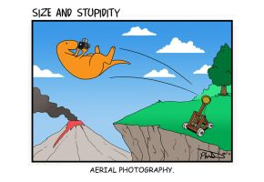 Aerial Photography by Size-And-Stupidity
