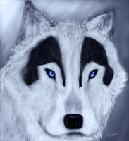 Frost-Wolf by ThePrimeElements