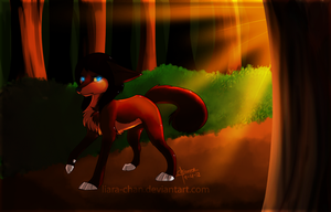 :.Sunset Stroll.: by Liara-Chan