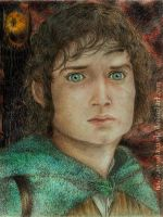 Frodo Baggins_Bolson by vegetanivel2