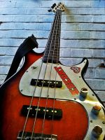 AT THE BASS by ANDYBURGESS